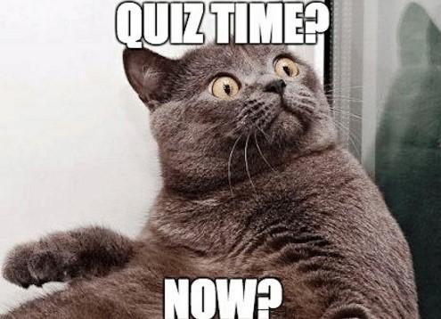 QUIZ: Wat voor quarantaine-roeier ben jij?